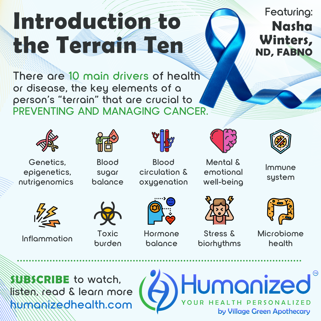 Introduction to the Terrain Ten